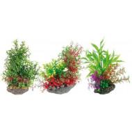 Mix plant 22 cm