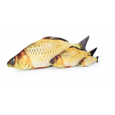 toy fish kapor best breeding supply