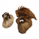 Dried beef ear with hair